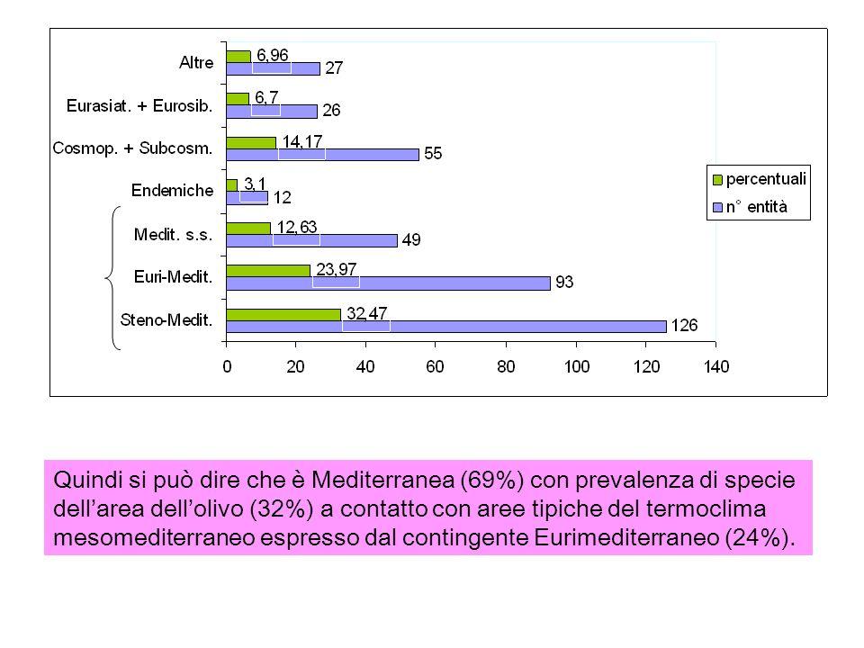 Quindi si può dire che è Mediterranea (69%) con prevalenza di specie dellarea dellolivo (32%) a contatto con aree tipiche del termoclima mesomediterraneo espresso dal contingente Eurimediterraneo (24%).