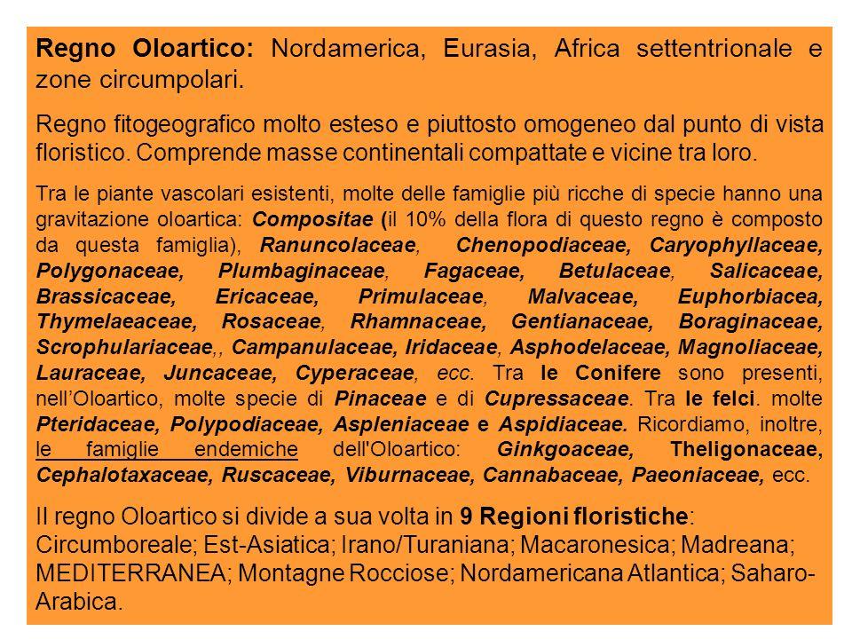 Regno Oloartico: Nordamerica, Eurasia, Africa settentrionale e zone circumpolari.