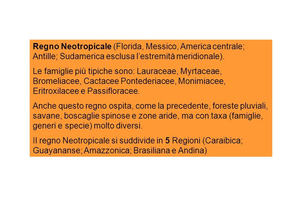 Regno Neotropicale (Florida, Messico, America centrale; Antille; Sudamerica esclusa lestremità meridionale).