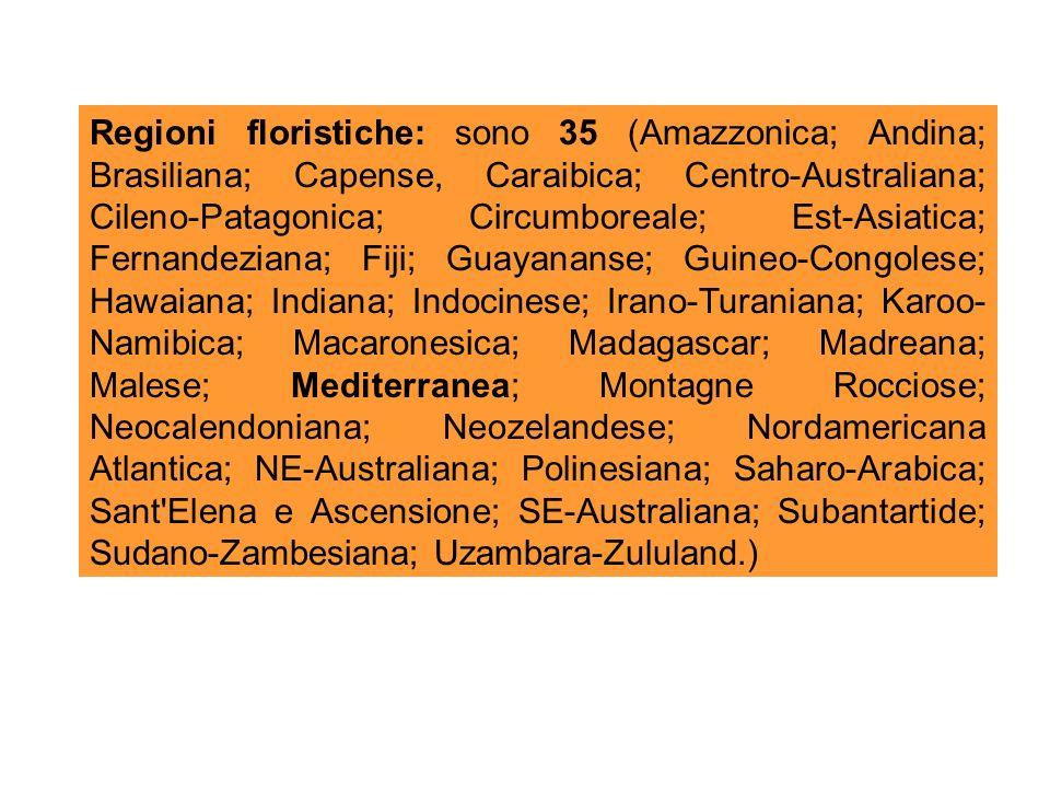 Regioni floristiche: sono 35 (Amazzonica; Andina; Brasiliana; Capense, Caraibica; Centro-Australiana; Cileno-Patagonica; Circumboreale; Est-Asiatica; Fernandeziana; Fiji; Guayananse; Guineo-Congolese; Hawaiana; Indiana; Indocinese; Irano-Turaniana; Karoo- Namibica; Macaronesica; Madagascar; Madreana; Malese; Mediterranea; Montagne Rocciose; Neocalendoniana; Neozelandese; Nordamericana Atlantica; NE-Australiana; Polinesiana; Saharo-Arabica; Sant Elena e Ascensione; SE-Australiana; Subantartide; Sudano-Zambesiana; Uzambara-Zululand.)