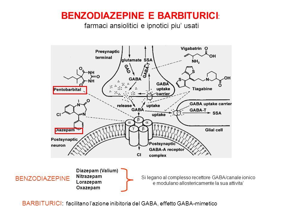Struttura pentamerica comprendente diverse subunita ( ) ognuna provvista di quattro domini transmembrana Recettore GABA-A : Recettore canale, permeabile agli ioni cloro La sua attivazione fissa il potenziale di membrana al potenziale di equilibrio del cloro (-70 mV) Lattivazione del recettore riduce leccitabilita cellulare allontanando il potenziale di membrana dalla soglia di attivazione del potenziale dazione BENZODIAZEPINE E BARBITURICI AGISCONO SUL RECETTORE PER IL GABA