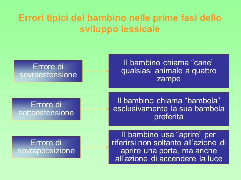 Il bambino costruisce il significato delle parole sulla base delle somiglianze percettive tra gli oggetti o eventi (es.