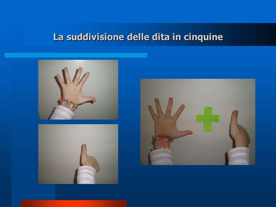 La suddivisione delle dita in cinquine