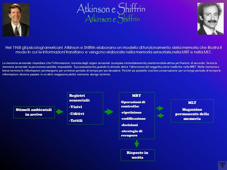 Nel 1968 gli psicologi americani Atkinson e Shiffrin elaborano un modello di funzionamento della memoria che illustra il modo in cui le informazioni t