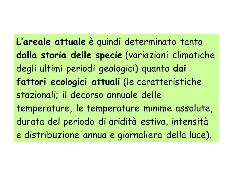 Lareale attuale è quindi determinato tanto dalla storia delle specie (variazioni climatiche degli ultimi periodi geologici) quanto dai fattori ecologi