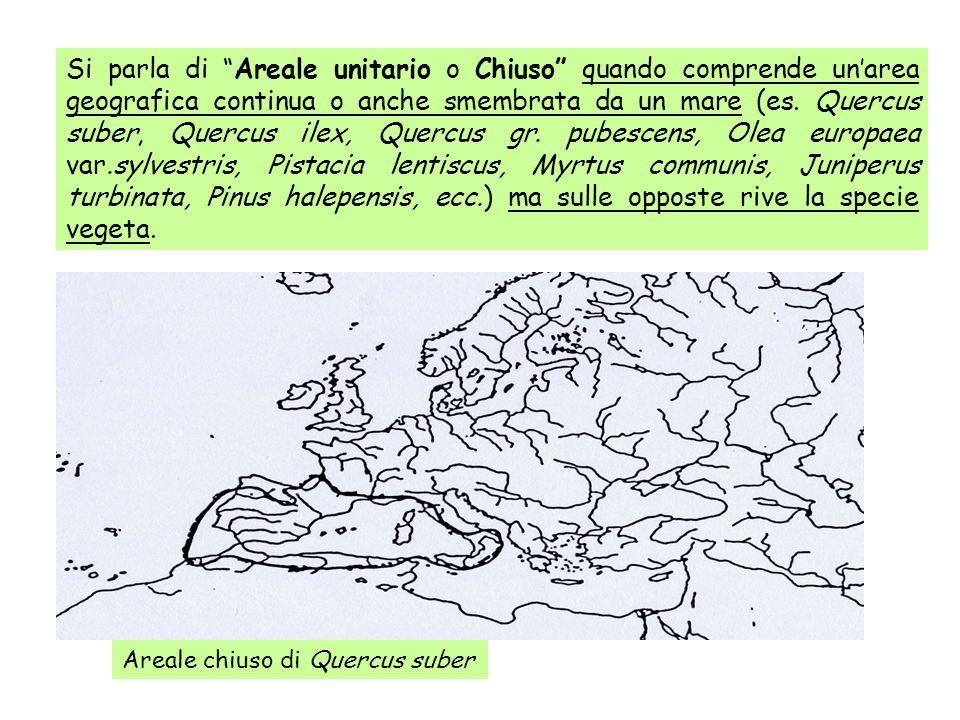 Si parla di Areale unitario o Chiuso quando comprende unarea geografica continua o anche smembrata da un mare (es. Quercus suber, Quercus ilex, Quercu