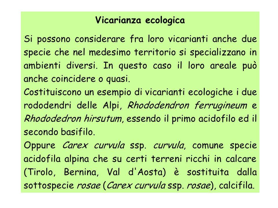 Vicarianza ecologica Si possono considerare fra loro vicarianti anche due specie che nel medesimo territorio si specializzano in ambienti diversi. In