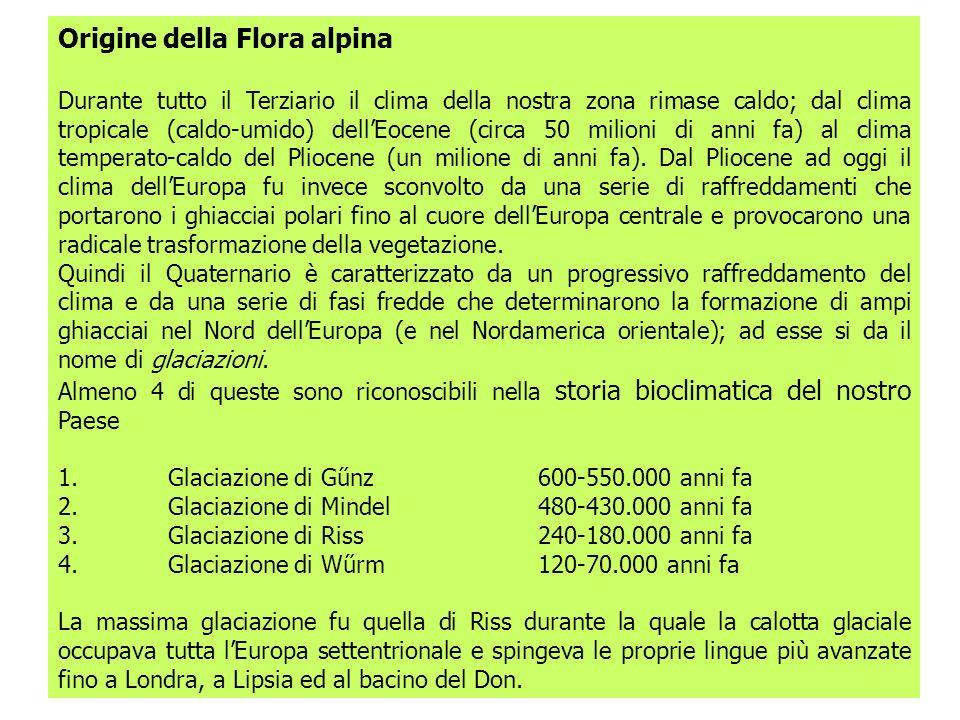 Origine della Flora alpina Durante tutto il Terziario il clima della nostra zona rimase caldo; dal clima tropicale (caldo-umido) dellEocene (circa 50 milioni di anni fa) al clima temperato-caldo del Pliocene (un milione di anni fa).