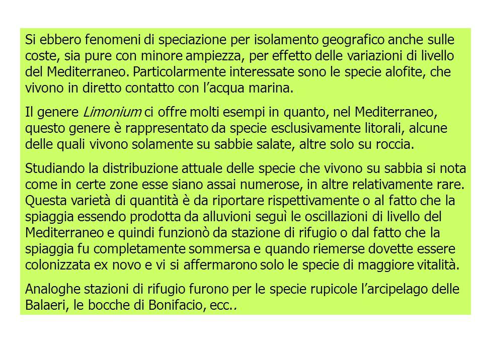 Si ebbero fenomeni di speciazione per isolamento geografico anche sulle coste, sia pure con minore ampiezza, per effetto delle variazioni di livello del Mediterraneo.