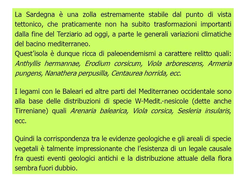 La Sardegna è una zolla estremamente stabile dal punto di vista tettonico, che praticamente non ha subito trasformazioni importanti dalla fine del Ter