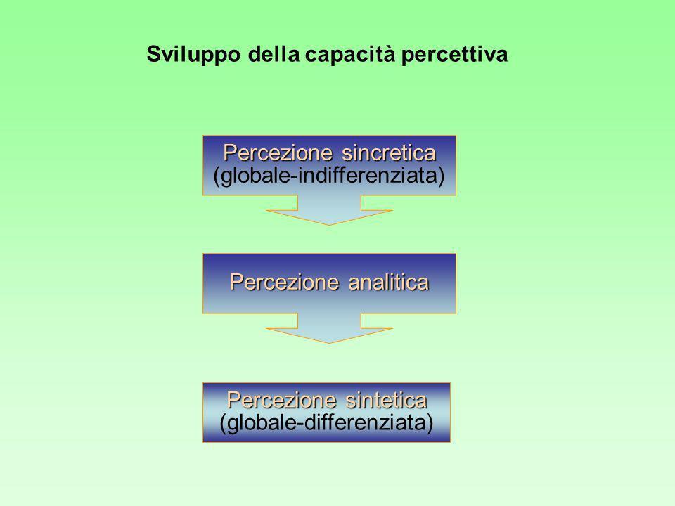 Sviluppo della capacità percettiva Percezione sincretica Percezione sincretica (globale-indifferenziata) Percezione analitica Percezione sintetica Percezione sintetica (globale-differenziata)