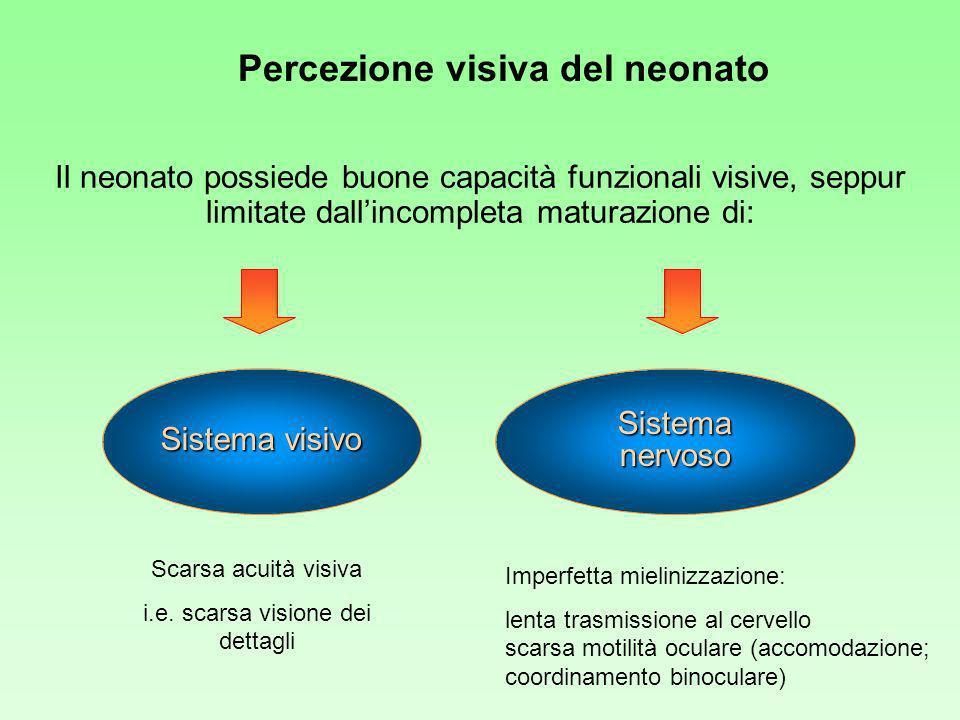 Percezione visiva del neonato Il neonato possiede buone capacità funzionali visive, seppur limitate dallincompleta maturazione di: Sistema visivo Sistema nervoso Scarsa acuità visiva i.e.