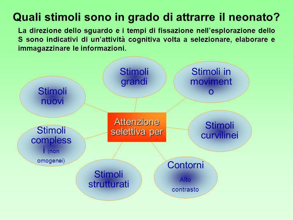 Quali stimoli sono in grado di attrarre il neonato? Attenzione selettiva per Stimoli curvilinei Stimoli grandi Stimoli in moviment o Contorni Alto con