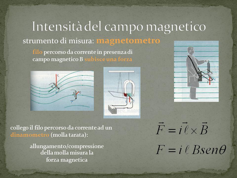 filo percorso da corrente in presenza di campo magnetico B subisce una forza strumento di misura: magnetometro collego il filo percorso da corrente ad