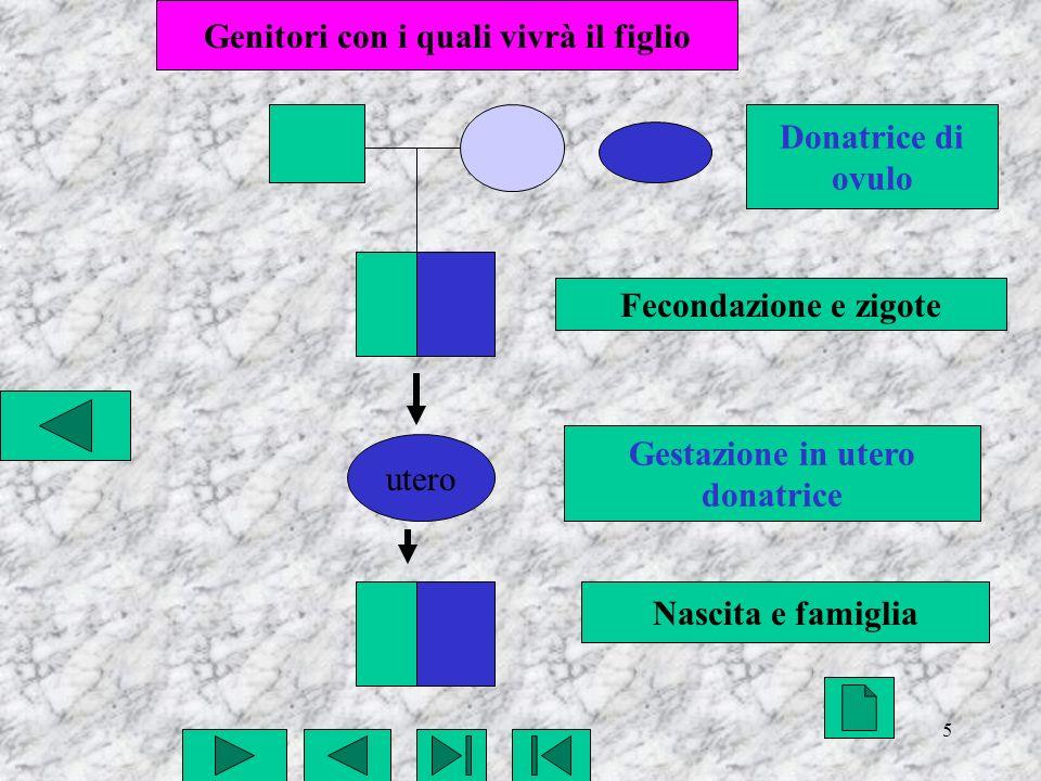 6 utero Fecondazione e zigote Gestazione in utero Nascita e famiglia Genitori con i quali vivrà il figlio Donatore di spermatozoi