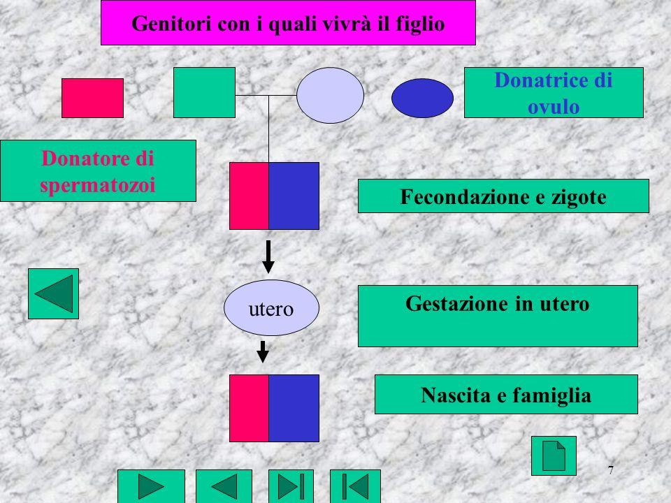 7 utero Fecondazione e zigote Gestazione in utero Nascita e famiglia Genitori con i quali vivrà il figlio Donatore di spermatozoi Donatrice di ovulo