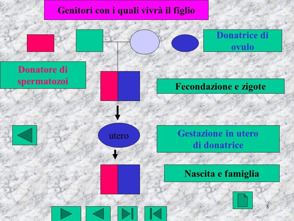 9 utero Fecondazione e zigote Gestazione in utero in affitto Nascita e famiglia Genitori con i quali vivrà il figlio Donatore di spermatozoi Donatrice di ovulo