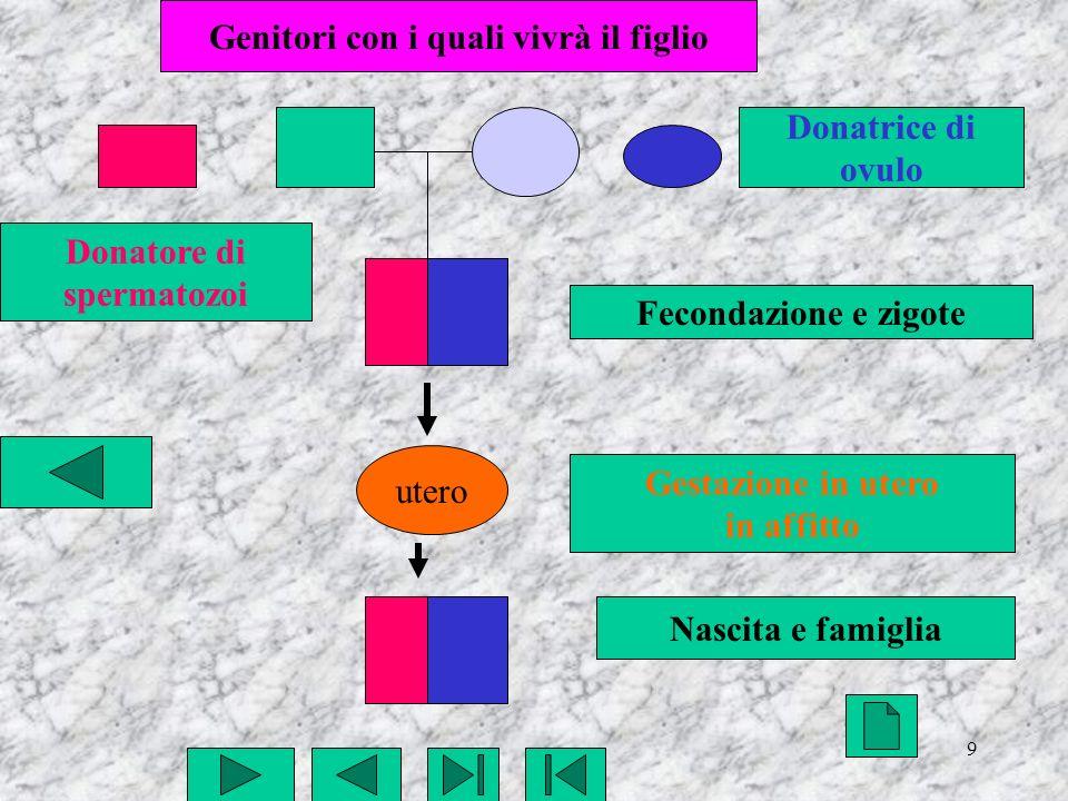 9 utero Fecondazione e zigote Gestazione in utero in affitto Nascita e famiglia Genitori con i quali vivrà il figlio Donatore di spermatozoi Donatrice