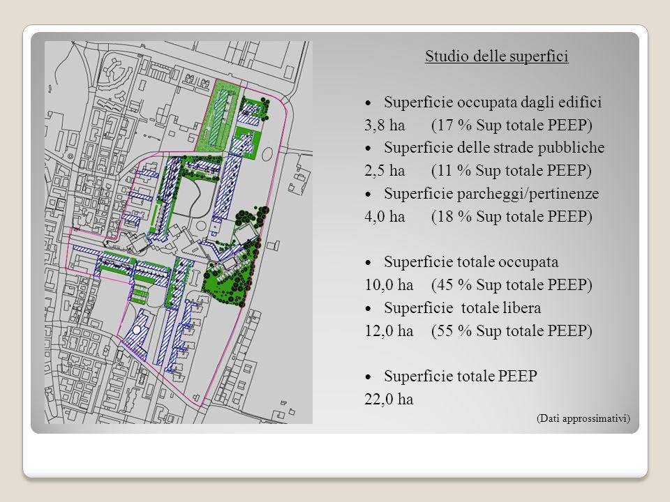 Studio delle superfici Superficie occupata dagli edifici 3,8 ha(17 % Sup totale PEEP) Superficie delle strade pubbliche 2,5 ha(11 % Sup totale PEEP) S