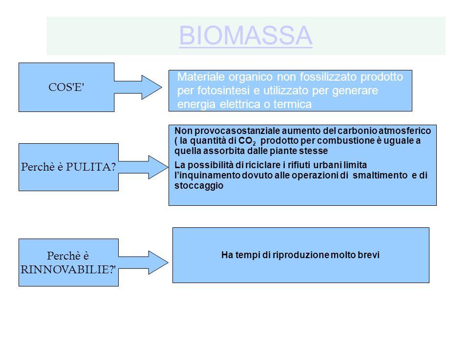 BIOMASSA Materiale organico non fossilizzato prodotto per fotosintesi e utilizzato per generare energia elettrica o termica COS'E' Perchè è RINNOVABIL