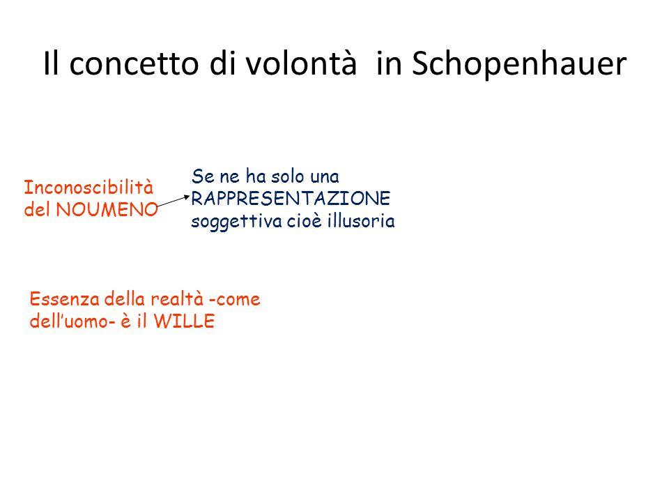 Il concetto di volontà in Schopenhauer Inconoscibilità del NOUMENO Se ne ha solo una RAPPRESENTAZIONE soggettiva cioè illusoria Essenza della realtà -