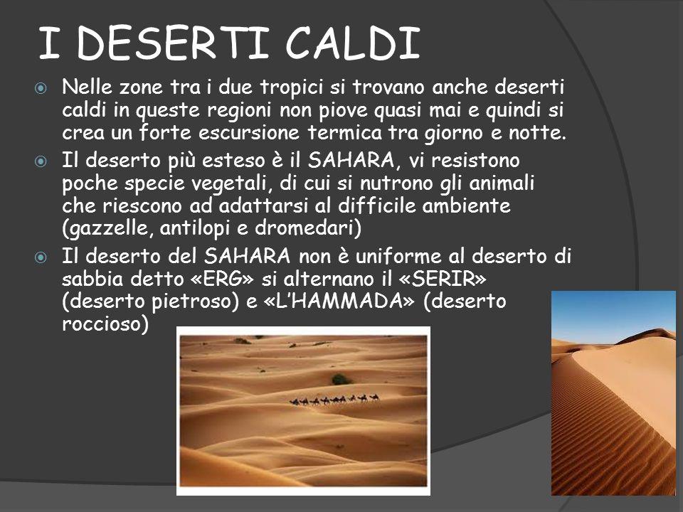 ERG : DESERTO DI SABBIA NellERG il vento muove la sabbia creando le dune, quando spirano i venti desertici (harmattan e il ghibli) si formano enormi nuvole di sabbia che oscurano il cielo.