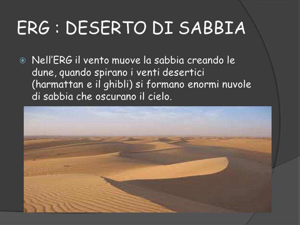 IL SAHARA Il deserto più esteso è il SAHARA, vi resistono poche specie vegetali, di cui si nutrono gli animali che riescono ad adattarsi al difficile ambiente (gazzelle, antilopi e dromedari) Il deserto del SAHARA non è uniforme al deserto di sabbia detto «ERG» si alternano il «SERIR» (deserto pietroso) e «LHAMMADA» (deserto roccioso) Il SAHARA è abitato da allevatori nomadi, oppure agricoltori delle oasi, mentre oggi i campi petroliferi hanno trasformato i paesaggi umani del SAHARA