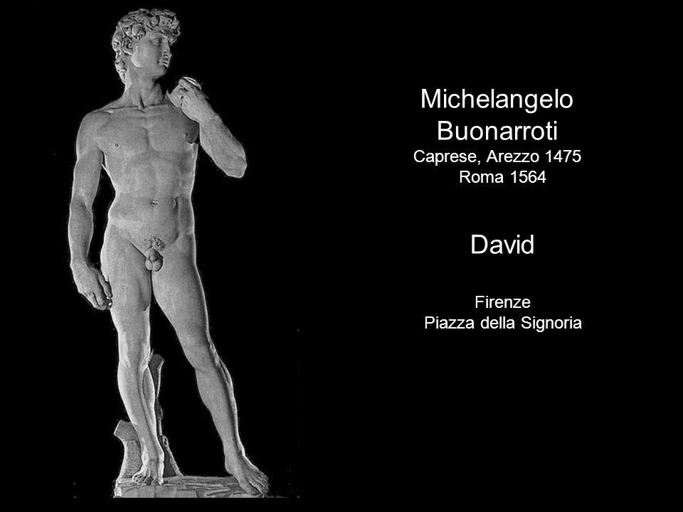 Michelangelo Buonarroti Caprese, Arezzo 1475 Roma 1564 David Firenze Piazza della Signoria