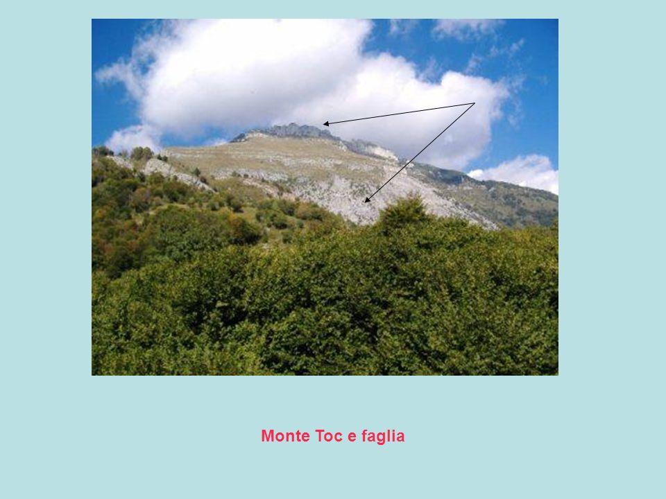 Monte Toc e faglia