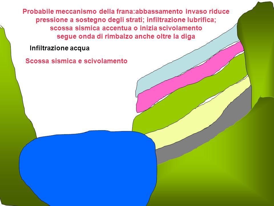 Infiltrazione acqua Scossa sismica e scivolamento Probabile meccanismo della frana:abbassamento invaso riduce pressione a sostegno degli strati; infiltrazione lubrifica; scossa sismica accentua o inizia scivolamento segue onda di rimbalzo anche oltre la diga