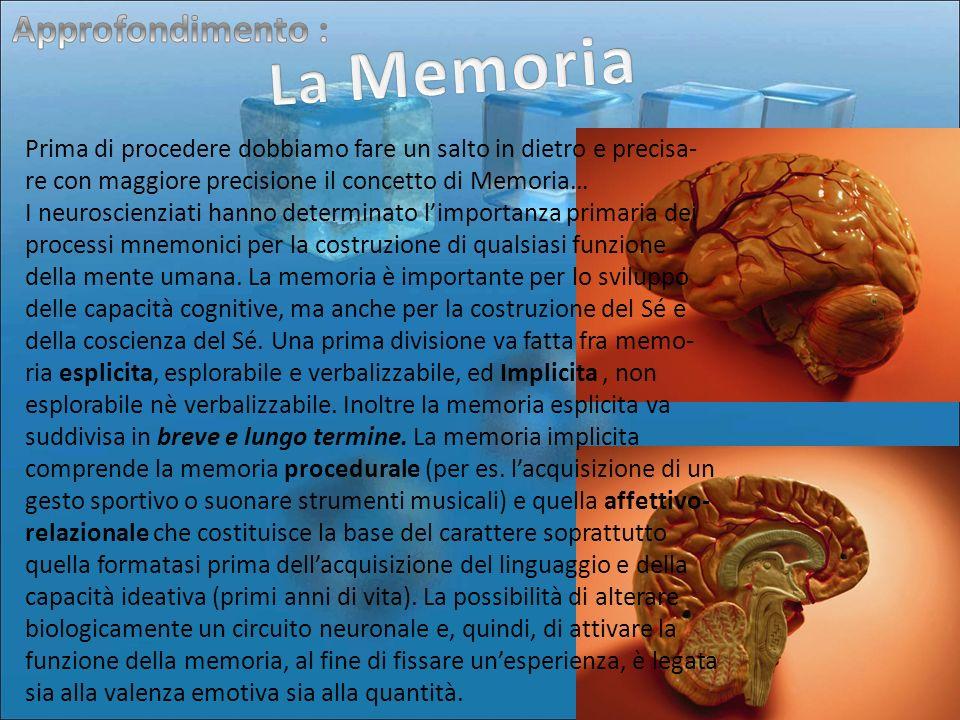 Prima di procedere dobbiamo fare un salto in dietro e precisa- re con maggiore precisione il concetto di Memoria… I neuroscienziati hanno determinato