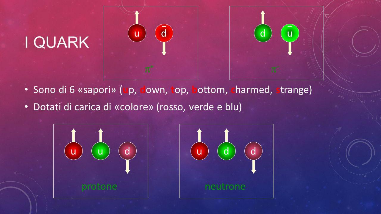 I QUARK Sono di 6 «sapori» (up, down, top, bottom, charmed, strange) Dotati di carica di «colore» (rosso, verde e blu) udu protone udd neutrone ud + d