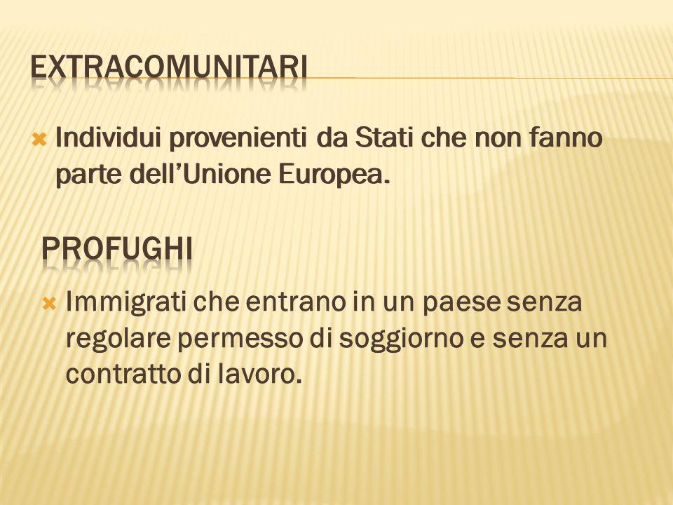 Individui provenienti da Stati che non fanno parte dellUnione Europea.
