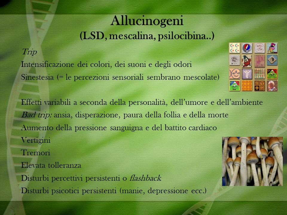Allucinogeni (LSD, mescalina, psilocibina..) Trip Intensificazione dei colori, dei suoni e degli odori Sinestesia (= le percezioni sensoriali sembrano mescolate) Effetti variabili a seconda della personalità, dellumore e dellambiente Bad trip: ansia, disperazione, paura della follia e della morte Aumento della pressione sanguigna e del battito cardiaco Vertigini Tremori Elevata tolleranza Disturbi percettivi persistenti o flashback Disturbi psicotici persistenti (manie, depressione ecc.)