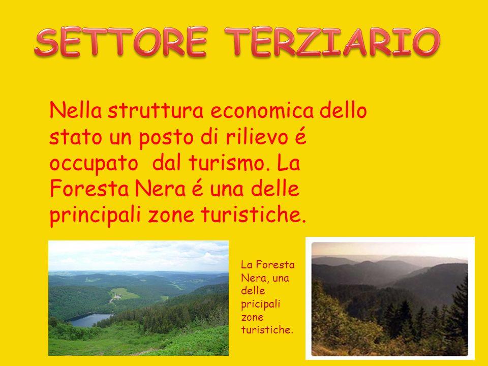 Nella struttura economica dello stato un posto di rilievo é occupato dal turismo. La Foresta Nera é una delle principali zone turistiche. La Foresta N