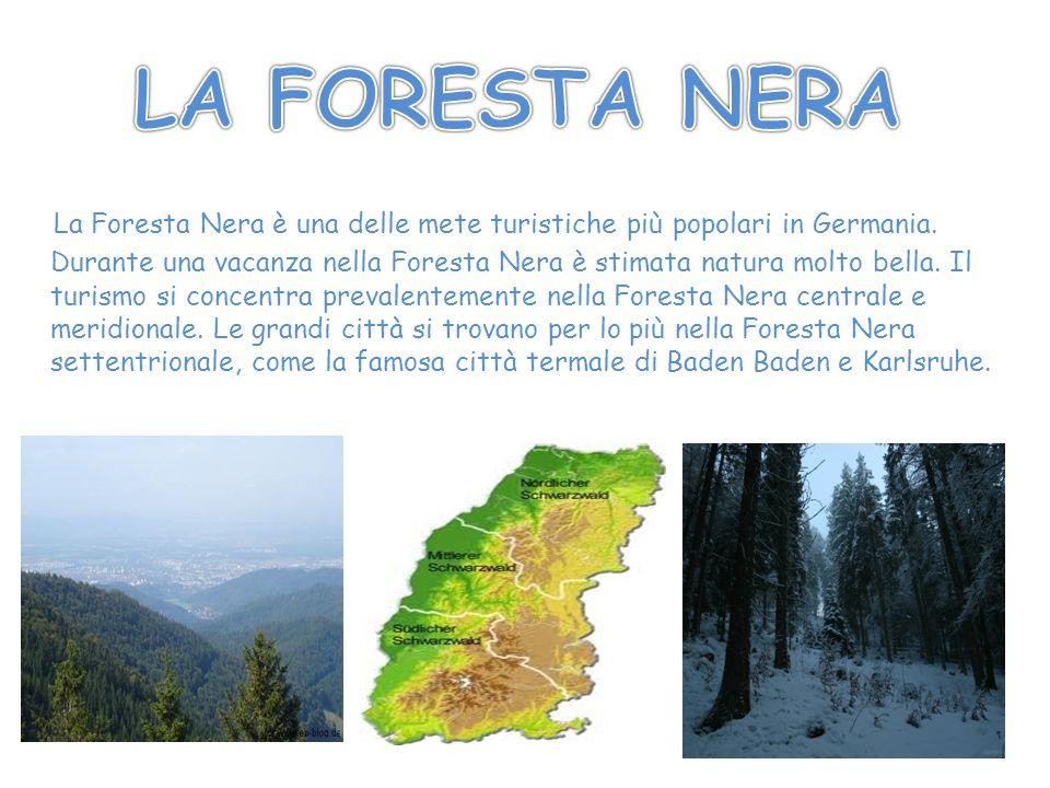 La Foresta Nera è una delle mete turistiche più popolari in Germania. Durante una vacanza nella Foresta Nera è stimata natura molto bella. Il turismo