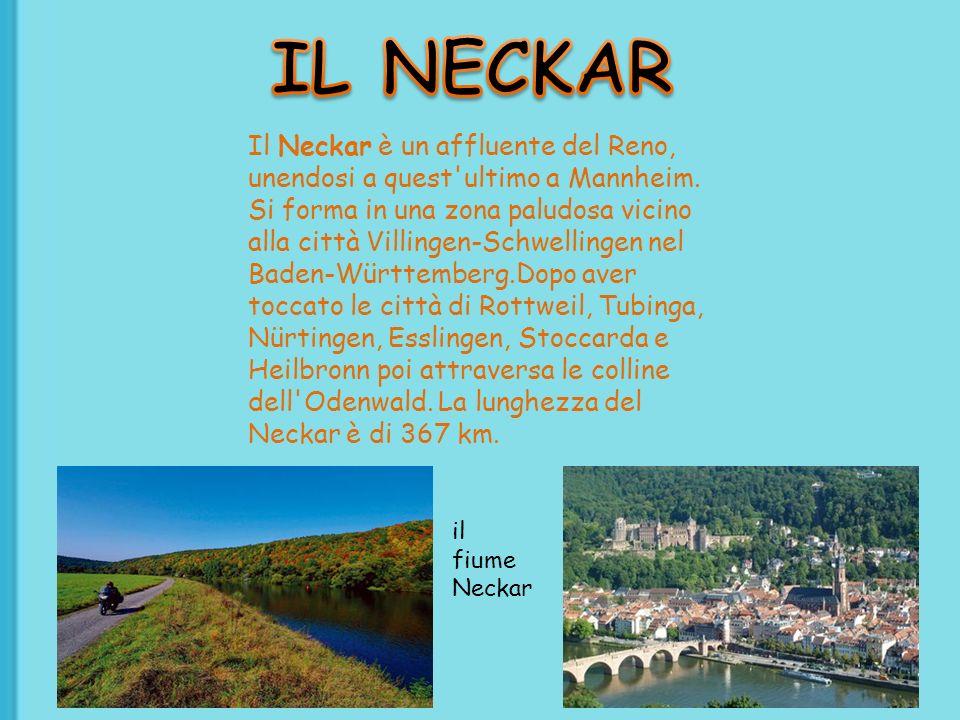 Il Neckar è un affluente del Reno, unendosi a quest'ultimo a Mannheim. Si forma in una zona paludosa vicino alla città Villingen-Schwellingen nel Bade