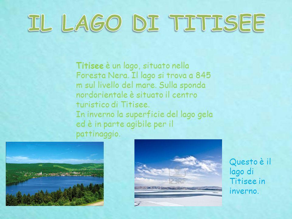 Titisee è un lago, situato nella Foresta Nera. Il lago si trova a 845 m sul livello del mare. Sulla sponda nordorientale è situato il centro turistico