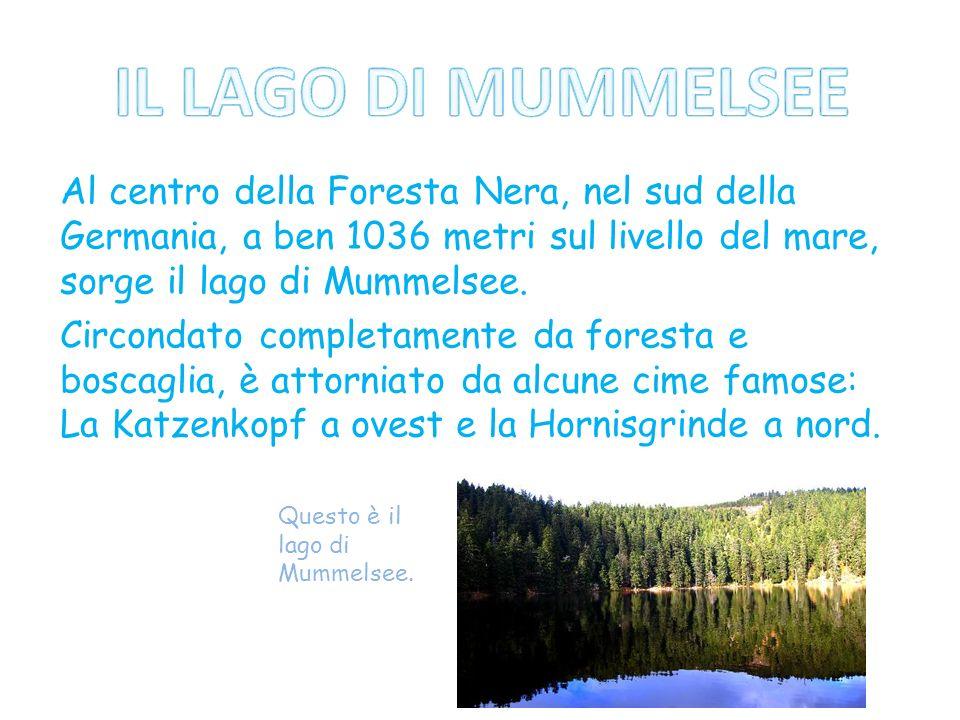 Al centro della Foresta Nera, nel sud della Germania, a ben 1036 metri sul livello del mare, sorge il lago di Mummelsee. Circondato completamente da f