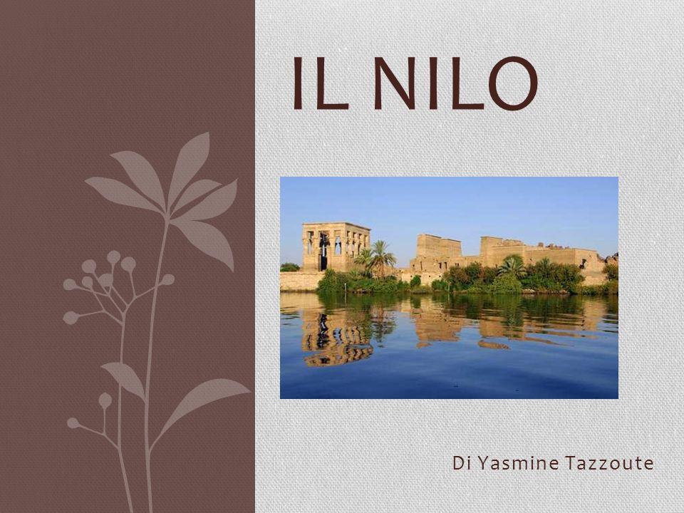 Il Nilo Bianco e il Nilo Azzurro Il Nilo ha due affluenti: il Nilo Bianco e il Nilo Azzurro.
