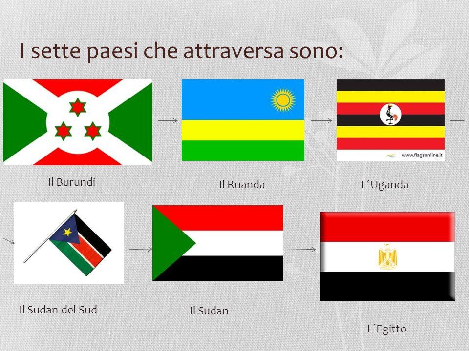 I sette paesi che attraversa sono: Il Burundi Il Ruanda L´Uganda Il Sudan del Sud Il Sudan L´Egitto
