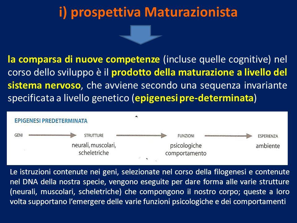 i) prospettiva Maturazionista la comparsa di nuove competenze (incluse quelle cognitive) nel corso dello sviluppo è il prodotto della maturazione a li