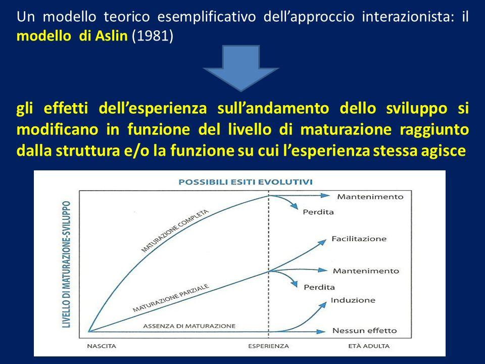 Un modello teorico esemplificativo dellapproccio interazionista: il modello di Aslin (1981) gli effetti dellesperienza sullandamento dello sviluppo si