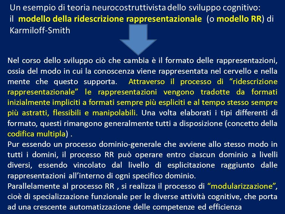 Un esempio di teoria neurocostruttivista dello sviluppo cognitivo: il modello della ridescrizione rappresentazionale (o modello RR) di Karmiloff-Smith