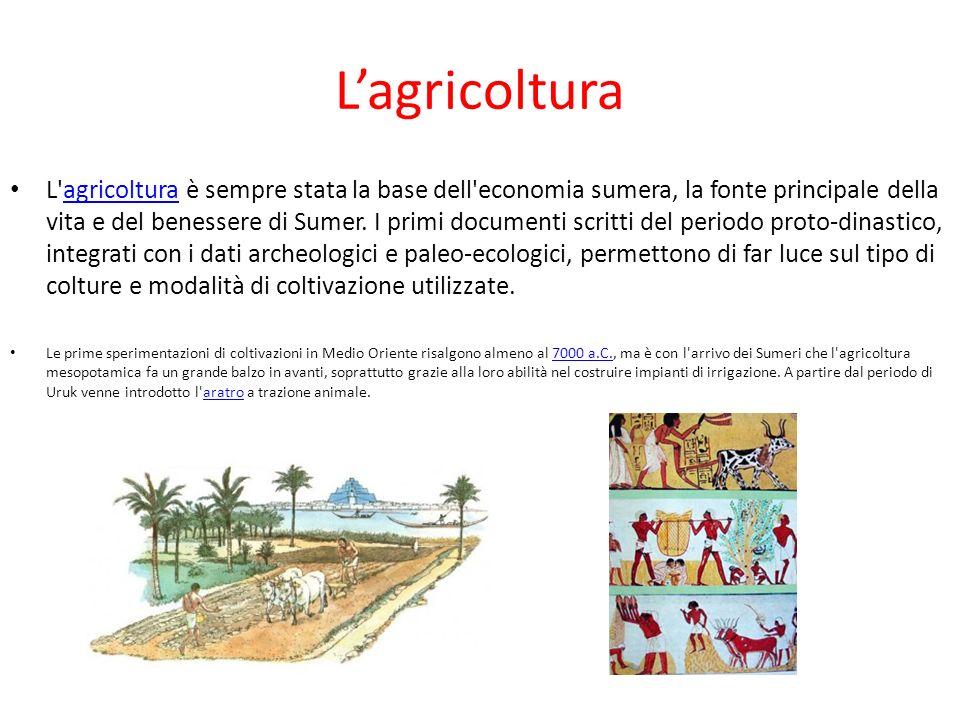 Lagricoltura L'agricoltura è sempre stata la base dell'economia sumera, la fonte principale della vita e del benessere di Sumer. I primi documenti scr