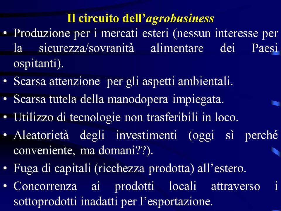 Il circuito dellagrobusiness Produzione per i mercati esteri (nessun interesse per la sicurezza/sovranità alimentare dei Paesi ospitanti). Scarsa atte