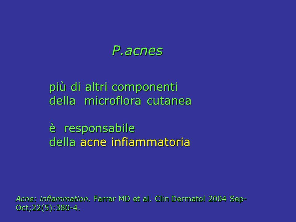 P.acnes P.acnes più di altri componenti più di altri componenti della microflora cutanea della microflora cutanea è responsabile è responsabile della acne infiammatoria della acne infiammatoria Acne: inflammation.