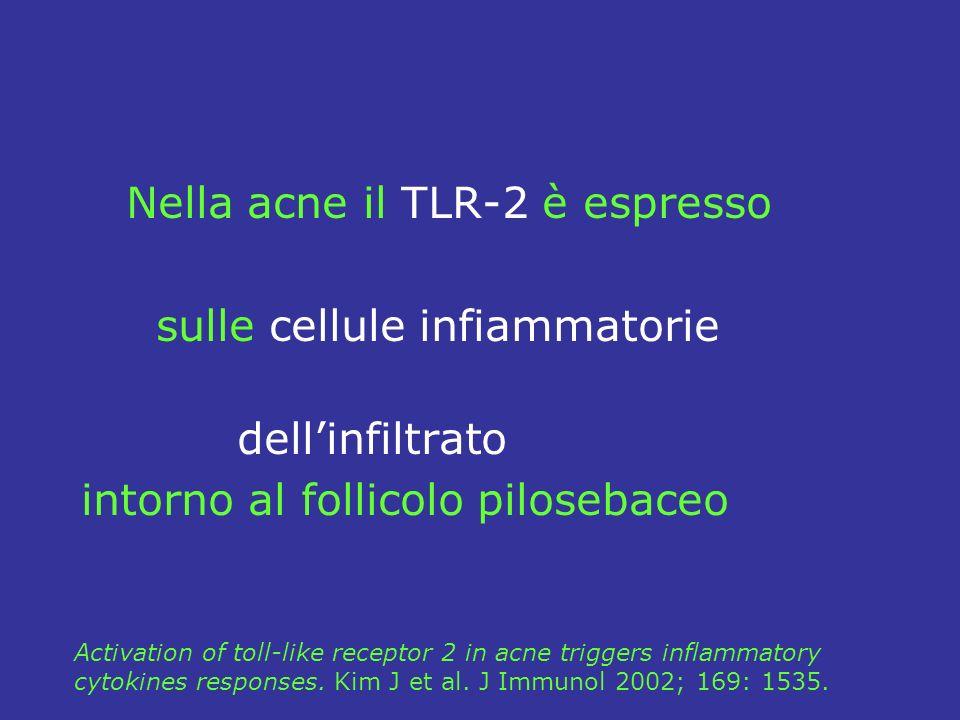 Nella acne il TLR-2 è espresso sulle cellule infiammatorie dellinfiltrato intorno al follicolo pilosebaceo Activation of toll-like receptor 2 in acne triggers inflammatory cytokines responses.