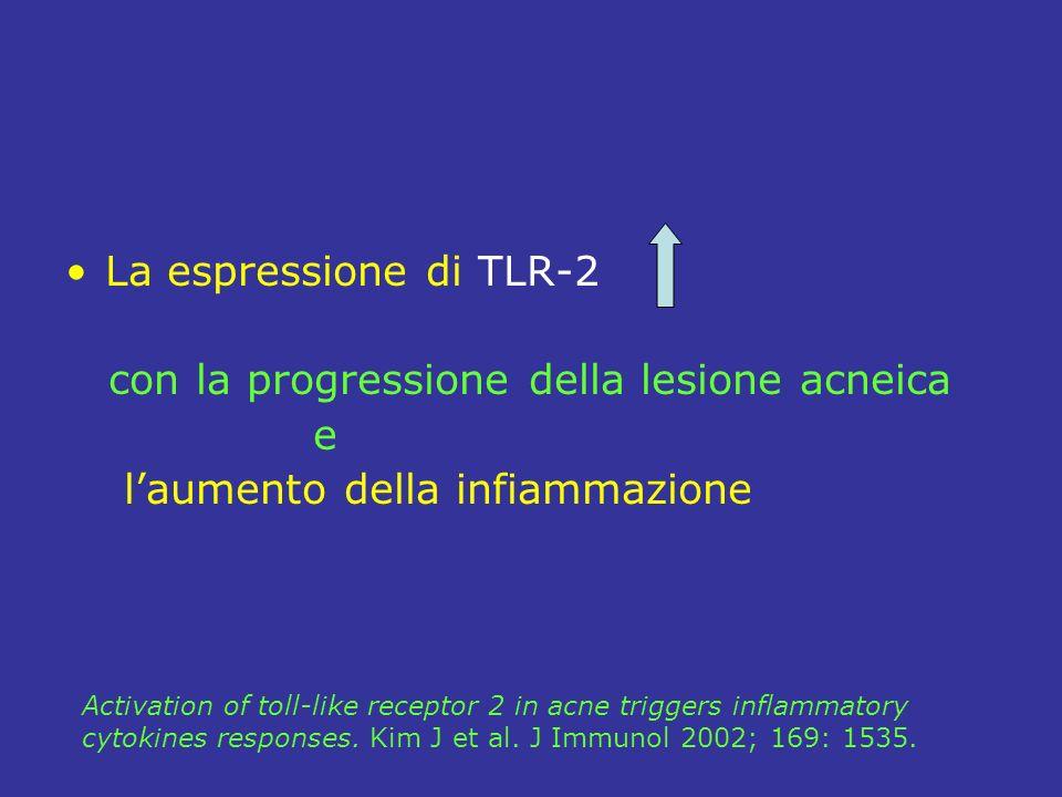 La espressione di TLR-2 con la progressione della lesione acneica e laumento della infiammazione Activation of toll-like receptor 2 in acne triggers inflammatory cytokines responses.