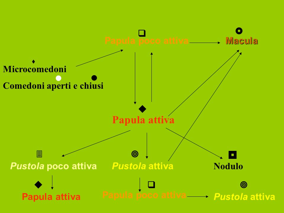 Microcomedoni Papula poco attiva Papula attiva Pustola attiva Nodulo Pustola poco attiva Papula attiva Papula poco attiva Pustola attiva Macula Comedoni aperti e chiusi